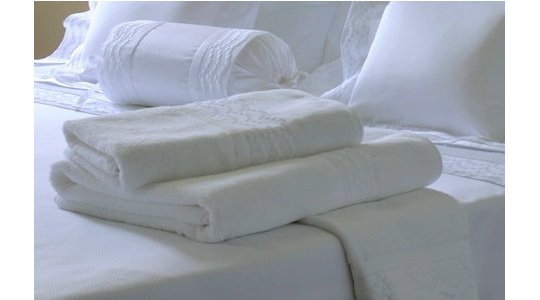 PLUMETIS embroidered bath towels
